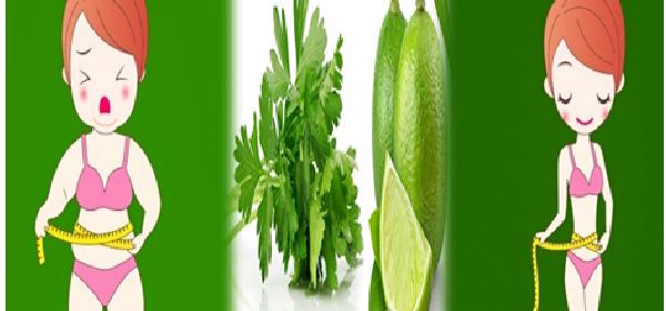 limon-y-perejil-para-perder-peso